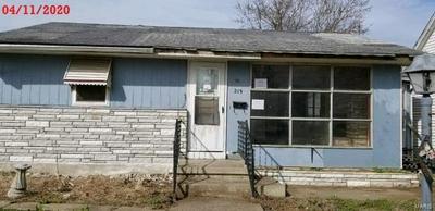 219 W DAVIDSON AVE, Chaffee, MO 63740 - Photo 1