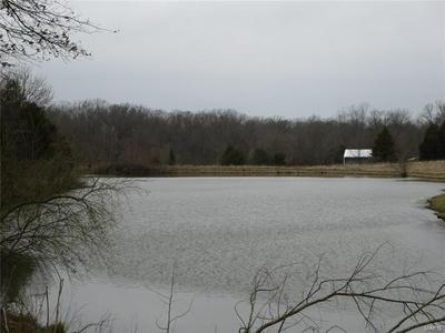 16 SQUIRES POINT, PITTSBURG, IL 62974 - Photo 2