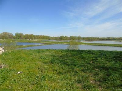1500 EAST 2900 N, Ramsey, IL 62080 - Photo 2
