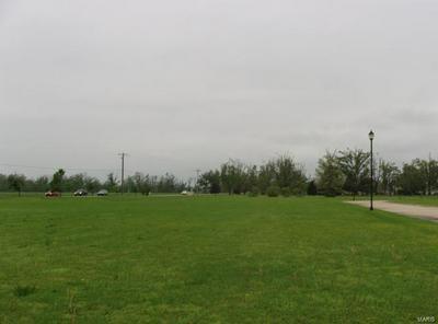 0 BRADSHAW DRIVE (LOT 24), Malden, MO 63863 - Photo 1