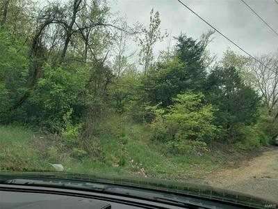 5524 CIRCLE VIEW DR, House Springs, MO 63051 - Photo 2