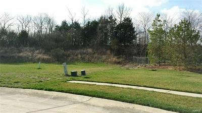 2315 LONGEST DR, Wentzville, MO 63385 - Photo 2