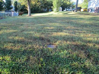 30 W OAK ST, St Clair, MO 63077 - Photo 2