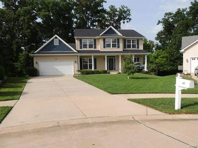 47 DRY BRANCH CT, Wentzville, MO 63385 - Photo 2