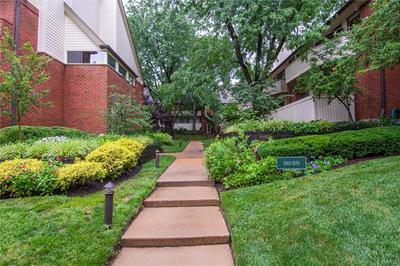 5579 WATERMAN BLVD APT C, St Louis, MO 63112 - Photo 2