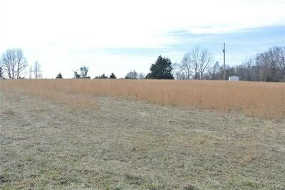 0 LOT 5 TYLER BRANCH ROAD, Perryville, MO 63775 - Photo 2