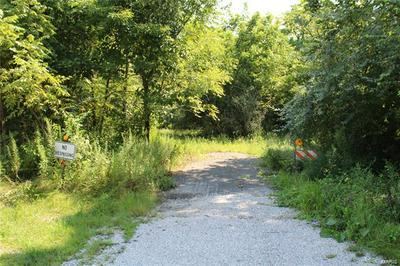 0 WINSLOW ROAD, Belleville, IL 62223 - Photo 2