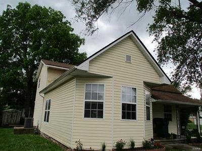 201 S 26TH ST, LOUISIANA, MO 63353 - Photo 2