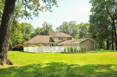 603 FOX RUN, Sparta, IL 62286 - Photo 2