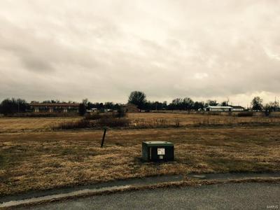 1 AUSTIN CT, BRIGHTON, IL 62012 - Photo 2
