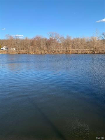 702 MOREDOCK LAKE DR, Valmeyer, IL 62295 - Photo 2