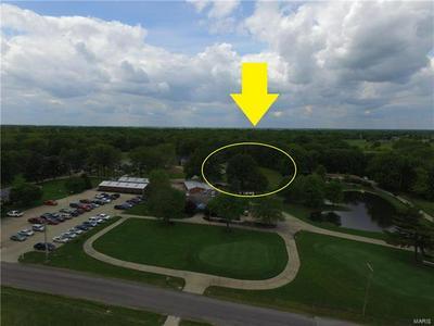 4 FAIRWAY ESTATES DRIVE, Okawville, IL 62271 - Photo 2