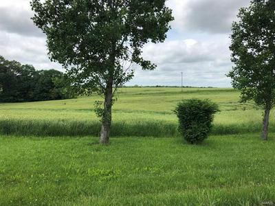 0 TYLER BRANCH ROAD, Perryville, MO 63775 - Photo 1
