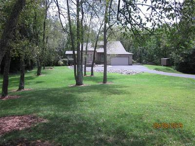 1241 WOLF RD, FREEBURG, IL 62243 - Photo 2
