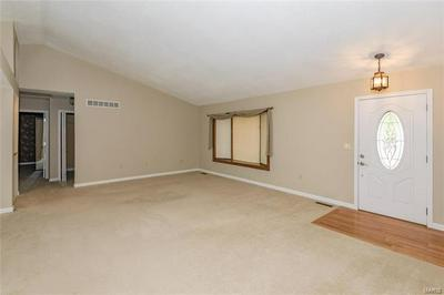 704 ANDRA DR, Maryville, IL 62062 - Photo 2