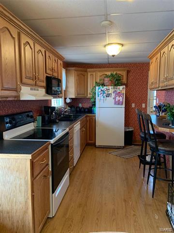 1034 MADISON 520, Fredericktown, MO 63645 - Photo 2
