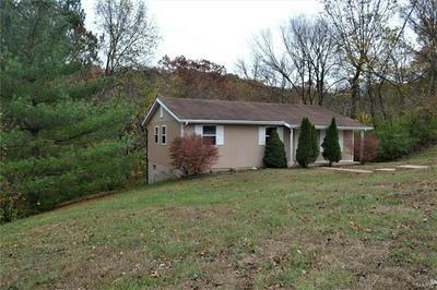 5519 CARTER DR, House Springs, MO 63051 - Photo 2