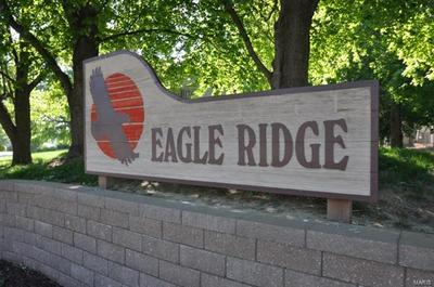 213 EAGLE RIDGE DRIVE, O'Fallon, IL 62269 - Photo 1