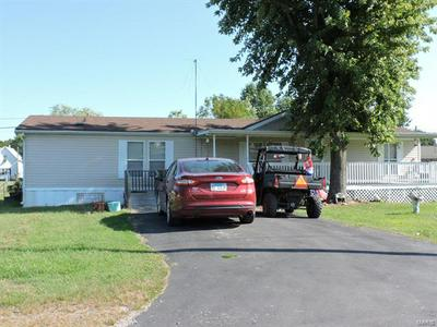 207 W WASHINGTON ST, Ava, IL 62907 - Photo 2