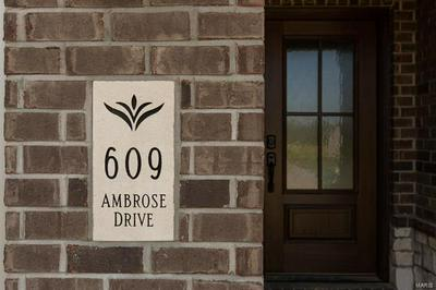 609 AMBROSE DR, O'Fallon, IL 62269 - Photo 2
