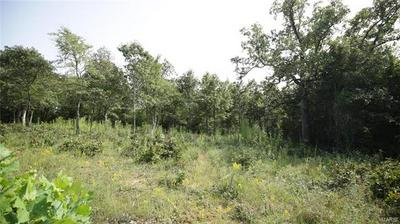4134 SADDLE RIDGE RD, De Soto, MO 63020 - Photo 2