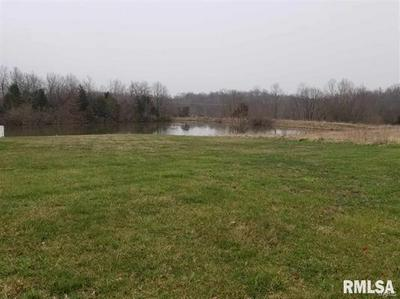 10 MISTY WATERS POINT, Pittsburg, IL 62974 - Photo 1
