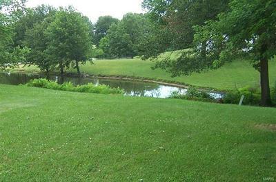 1652 MOLOKAI CT, Worden, IL 62097 - Photo 2