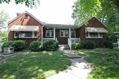 20708 STAUNTON RD, Staunton, IL 62088 - Photo 1