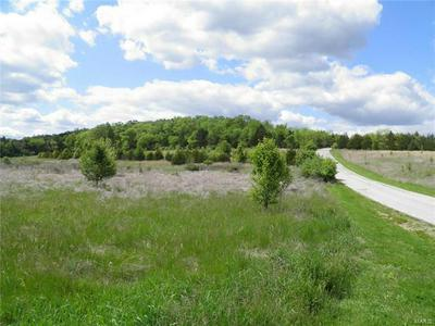 0 LOT 22 OF DRY FORK MEADOWS, Imperial, MO 63052 - Photo 1
