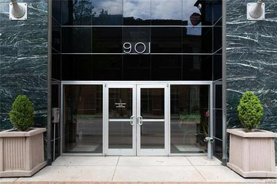 901 WASHINGTON AVE UNIT 306, St Louis, MO 63101 - Photo 2