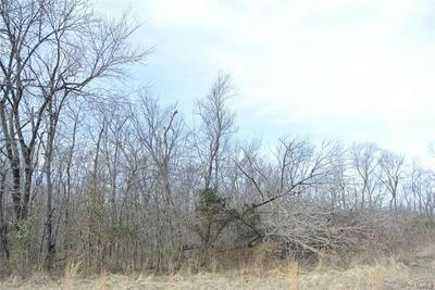 0 LOT 28A TYLER BRANCH ROAD, Perryville, MO 63775 - Photo 2