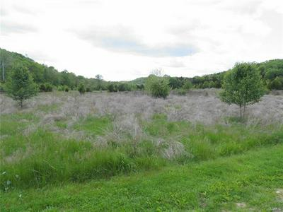 0 LOT 1 OF DRY FORK MEADOWS, Imperial, MO 63052 - Photo 1