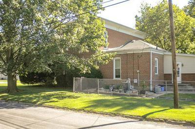 227 PINE ST, CARLINVILLE, IL 62626 - Photo 2