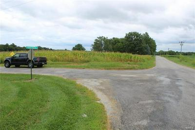 0 KROP ROAD, Millstadt, IL 62260 - Photo 1