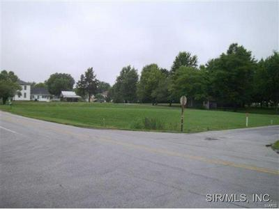 201 E KNAUER ST, Ava, IL 62907 - Photo 2