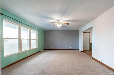 1 MERLIN CT, Breese, IL 62230 - Photo 2