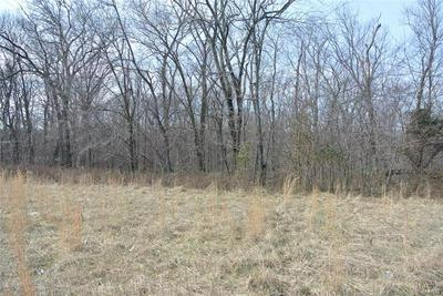 0 LOT 29A TYLER BRANCH ROAD, Perryville, MO 63775 - Photo 1