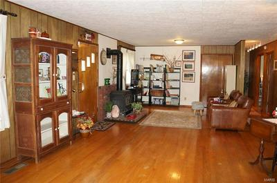 157 GOLDEN EAGLE FERRY RD, Golden Eagle, IL 62036 - Photo 2