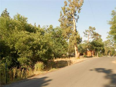 698 HOLMES LN, Sugarloaf, CA 92386 - Photo 2