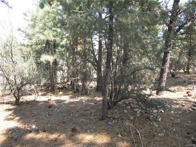 0 SITES WAY, Big Bear City, CA 92314 - Photo 2