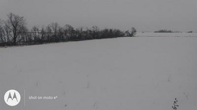 1469 HIGHWAY 1, Lisbon, IA 52253 - Photo 2