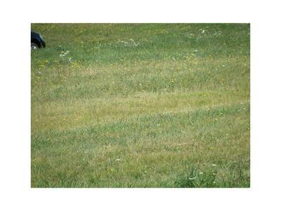 ROUTE 6 EAST COLUMBUS PARCEL #1 AVENUE, CORRY, PA 16407 - Photo 1