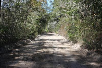 0 JOSEPH WIGGINS/MINERAL SPRINGS RD ROAD, WAYNESVILLE, GA 31566 - Photo 2