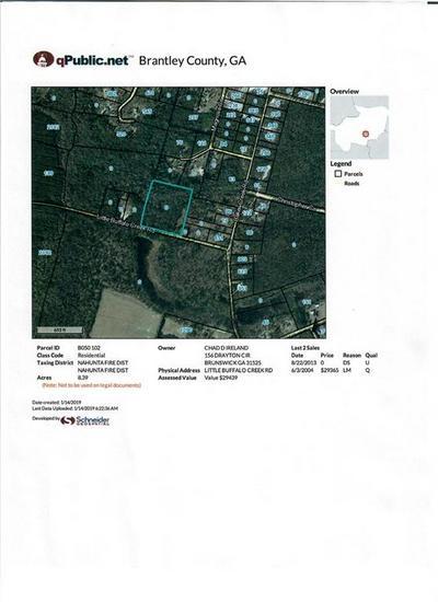 0 LITTLE BUFFALO, Nahunta, GA 31553 - Photo 2