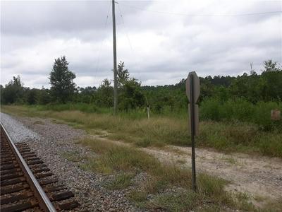 0 LEE CIR/JOHNS WAY, Nahunta, GA 31553 - Photo 1