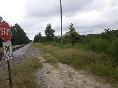 0 LEE CIR/JOHNS WAY, Nahunta, GA 31553 - Photo 2