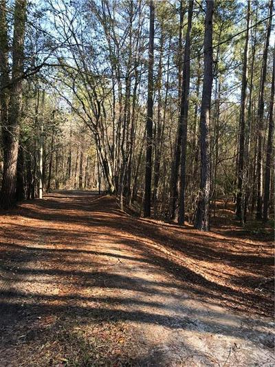 000 S DEKLE ROAD S, Statesboro, GA 30453 - Photo 1