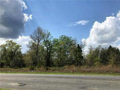 84 BUSTER WALKER RD, WAYNESVILLE, GA 31566 - Photo 1