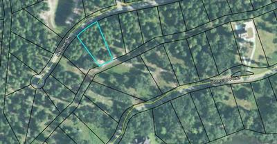 LOT#522 COOPERS POINTE DRIVE, Townsend, GA 31331 - Photo 1