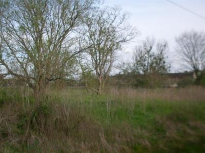 290 N N/A, HEMPSTEAD, TX 77445 - Photo 2